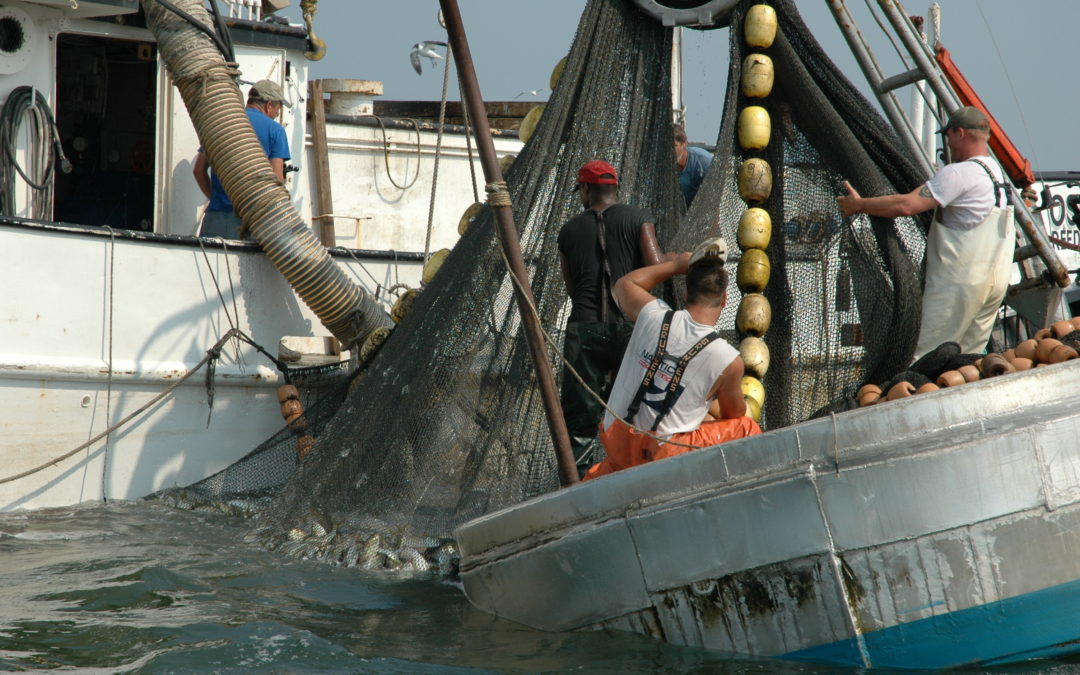 Supporting a Healthy Menhaden Population to Ensure Viability of Local and Regional Economies: OUR COMMON AGENDA