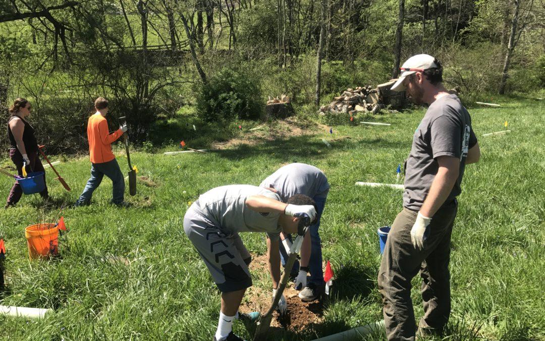 Alt Spring Break: Planting Trees & Kayaking