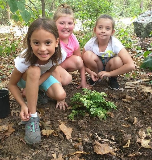 Environmental education, let's make it a priority for our state!