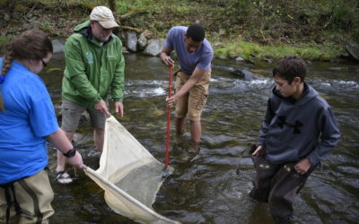 Raising brook trout, just like Mother Nature