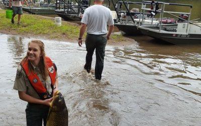 Upper Rappahannock has a new dominant fish