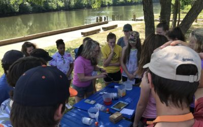 Environmental Education is More than Just a Walk in the Park
